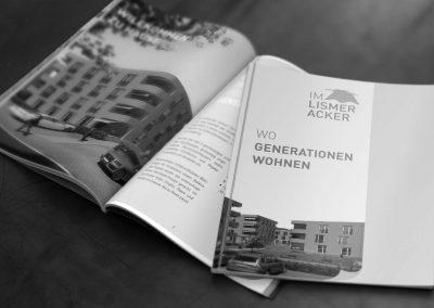 Dokumentation Im Lismeracker, Gretzenbach